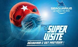 Seaquarium: Une entrée pour adulte ou enfant à 8,50 € pour tout découvrir sur la vie sous-marine au Seaquarium du Grau-du-Roi