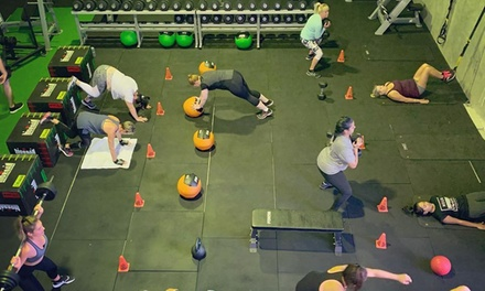 One Month of Functional Training & Body Scan for One $19 or Two Ppl $35 at 5ive Element Fitness Up to $396 Value
