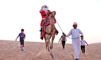 Half Day Desert Safari for Up to Ten with Al Badeyah Eyes Tourism (Up to 55% Off)