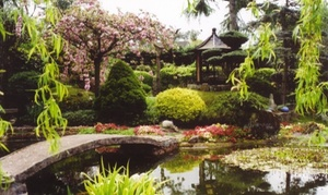 Pure Land Meditation Centre and Japanese Garden: Admission to the Japanese Meditation Garden and Crystal Garden for One, Two or a Family of Four (Up to 41% Off)
