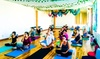 Yoga Remedys Essential Wellness - West Carson: Ten Yoga Classes or Four Flying Classes at Yoga Remedy's Essential Wellness (Up to 81% Off)