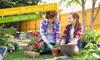 Kostenlos Garten-Tipps downloaden