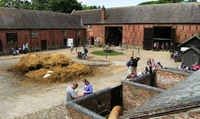 Entry to Acton Scott Historic Working Farm for Two Adults or a Family of Four (Up to 28% Off)