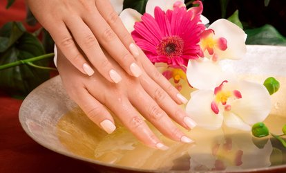 image for Shellac Manicure or Pedicure or Both at Shades Hair and Beauty