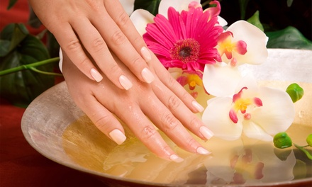 Shellac Manicure or Pedicure or Both at Shades Hair and Beauty