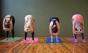 Pradhana Power Yoga: 5, 10, or 20 Yoga Classes at Pradhana Power Yoga (Up to 67% Off)