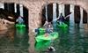 56% Off Kayaking Tour