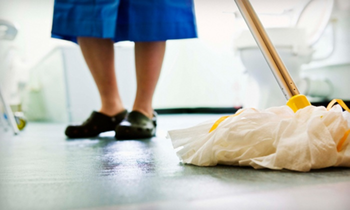 Got It Maid - La Mesa: Cleaning Services for Up to 1,500 or 2,500 Square Feet from Got It Maid