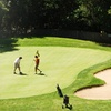 Up to 51% Off Golf Outing for Two or Four in Healdsburg