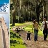 Half Off Bok Tower Gardens Membership