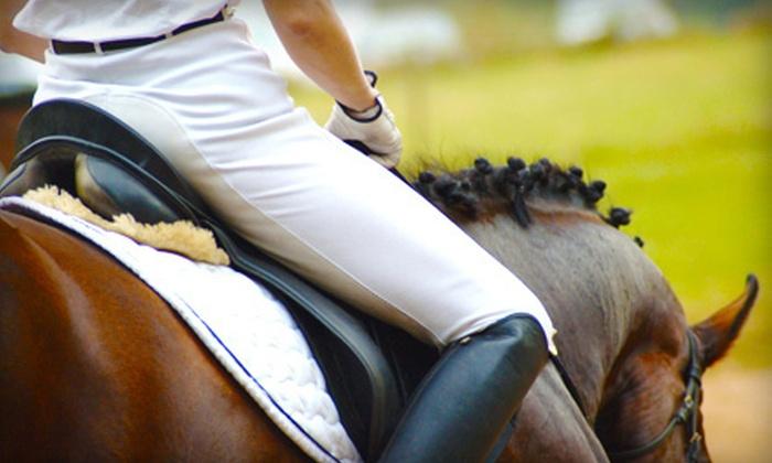 Elite Sporthorse - Central Southwest: $25 Toward a Riding Lesson