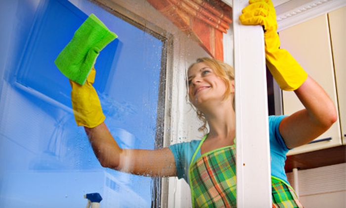 Speedy Windows - Boise: $40 for $80 Worth of External Window-Cleaning Services from Speedy Windows