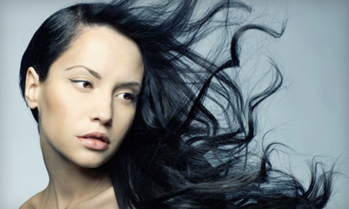 The Salon Professional Academy - Saint Charles: Feather-Extensions Styling Package or Cut and Highlights at The Salon Professional Academy in St. Charles (Half Off)