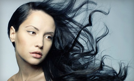 Feather Hair Extensions with a Deep-Conditioning Treatment, Blowout, and Style  (a $44 value) - The Salon Professional Academy in St. Charles