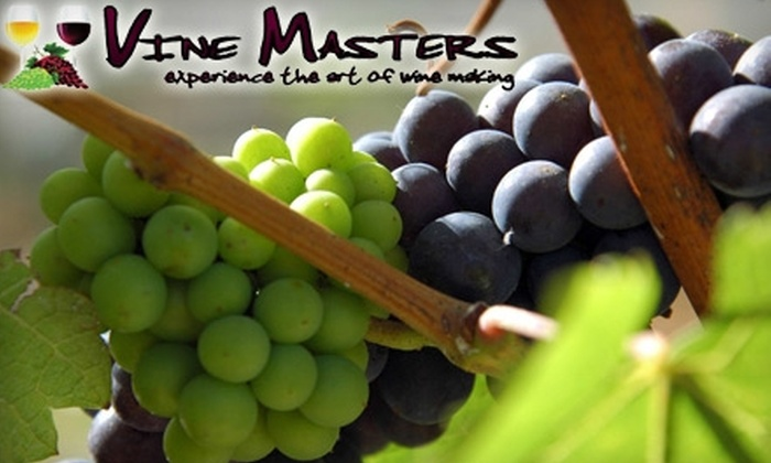 Vine Masters - Kitchener - Waterloo: $49 for a Vino del Vida Wine Making Experience from Vine Masters ($109 Value)