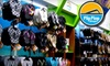 Flip Flop Shops - Tallahassee: $15 for $30 Worth of Flip-Flops and Sandal Merchandise at Flip Flop Shops
