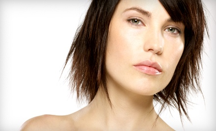 Haircut and Partial Highlights (a $140 value) - Robert Johnson Salon in Lisle