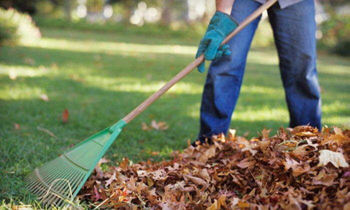 Lawn and Landscape Gardens - Arden Hills - Shoreview: Lawn-Care Services from Lawn and Landscape Gardens. Three Options Available.