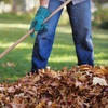 Up to 56% Off from Lawn and Landscape Gardens