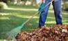 Lawn and Landscape Gardens: Lawn-Care Services from Lawn and Landscape Gardens. Three Options Available.