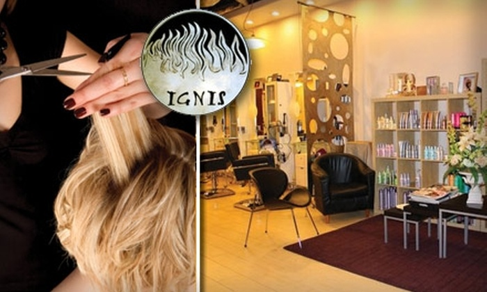 Ignis Salon - Poway: $40 for $100 Worth of Hair Services at Ignis Salon