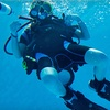 51% Off Try Scuba Class at The Scuba Gym