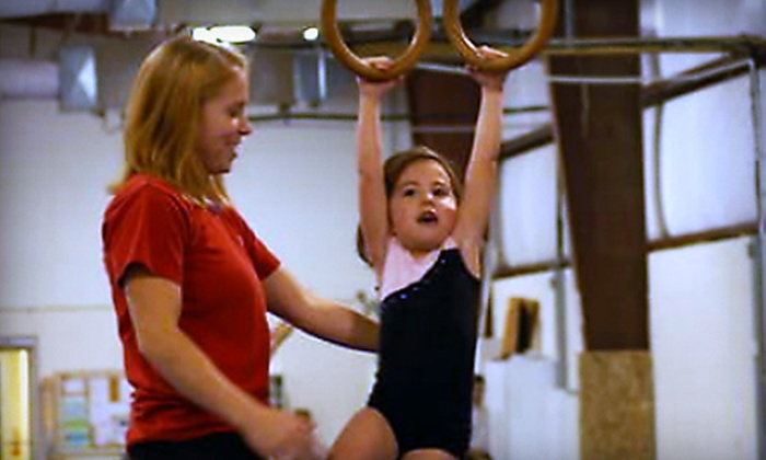 Twigs Kids Gymnastics and Swimming - West Carrollton: Three Bouncing with Books Passes or Gym or Swim Party At Twigs Kids Gymnastics and Swimming