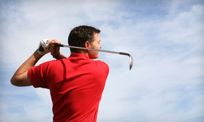 Up To 57 Off Private Golf Lesson The Better Golf Academy Groupon