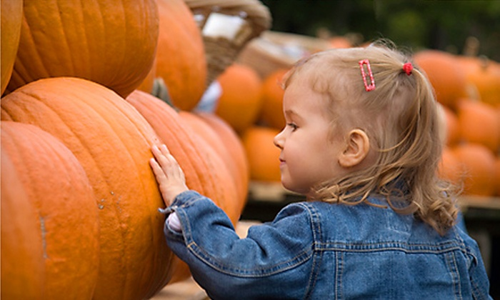 Belvedere Plantation - Fredericksburg: $26 for Two Season Passes to the Harvest Festival at Belvedere Plantation in Fredericksburg (Up to $52 Value)