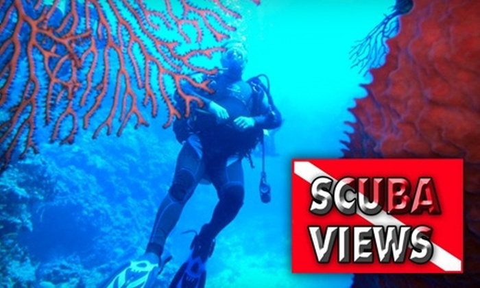 Scuba Views - Northwest Area: $30 for a Beginner's Discover Scuba-Diving Class and Underwater Photograph at Scuba Views