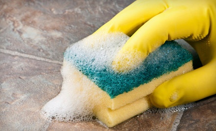 One 2-Hour Basic Cleaning Session (a $118 value) - Maximized Cleaning Solutions in