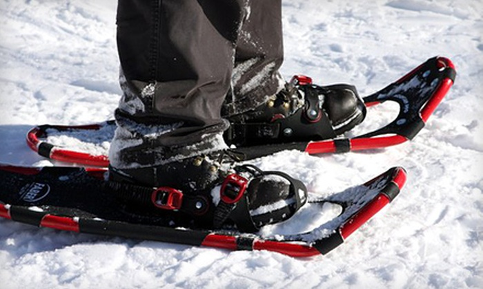 Toronto Adventures Inc. - Lambton Baby Point: $30 for Intro to Snowshoeing and Guided Humber Valley Tour from Toronto Adventures Inc. ($60 Value)