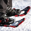 Intro to Snowshoeing and Guided Humber Valley Tour