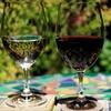Half Off Wine Tastings for 2 or 4 at Tamas Estates