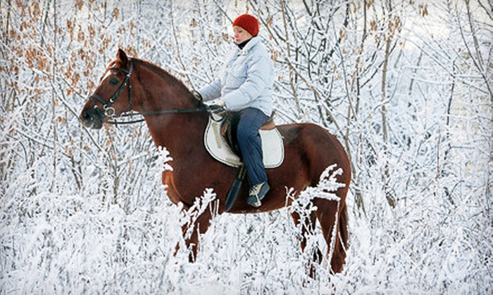 Blue Sky Adventures - Wanship: 60-Minute Guided Horseback Ride with Hot Cocoa for Two or Four from Blue Sky Adventures in Wanship (Up to 57% Off)