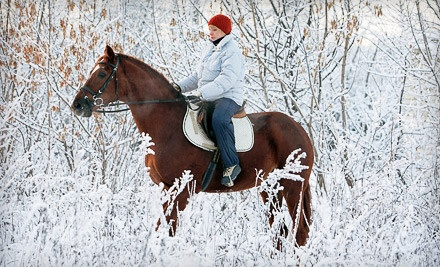 Guided, 1-Hour Horseback Ride for 2 People with Hot Cocoa (a $160 value) - Blue Sky Adventures in