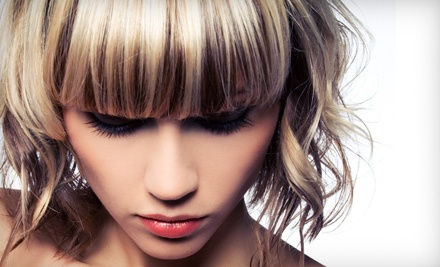 Haircut and Style (a $45 value) - Gina Maries Salon at Salon Premiere in Minneapolis