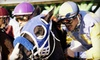 Sam Houston Race Park - Houston: Four Tickets or Private Suite for Up to 20 to See Quarter-Horse Racing at Sam Houston Race Park (Up to 51% Off)