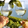 51% Off Vineyard Party Admission