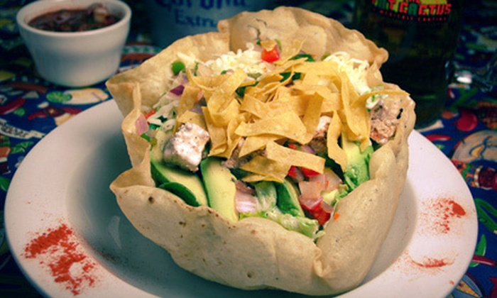 The Fat Cactus - Lynnfield: $15 Worth of Mexican and Tex-Mex Food
