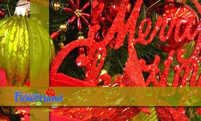 Fruit Basket Flowerland - Multiple Locations: $20 for $40 Worth of Christmas Trees, Ornaments, and More at Fruit Basket Flowerland