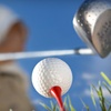 Up to 61% Off Golf Outing for One, Two, or Four