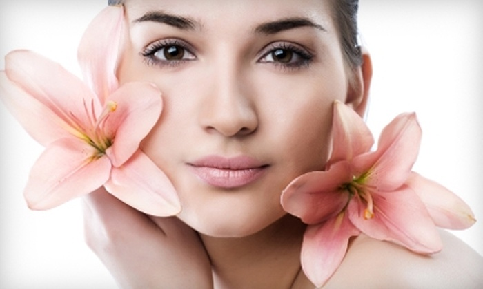 Nikki Heller at Permanent Waves Salon and Spa - Scottdale: $30 for a 30-Minute Dermabrasion Facial from Nikki Heller at Permanent Waves Salon and Spa in Scottdale ($60 Value)