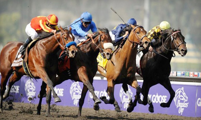 Breeders' Cup World Championships - South Louisville: One Ticket to the Breeders' Cup World Championships at Churchville Downs in Louisville (Up to 53% Off). Six Options Available.