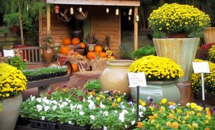 $30 Groupon to Habersham Nursery - Habersham Gardens in Atlanta