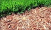 Scrubnik Lawn & Landscape: 5 Cubic Yards of Red Mulch or Spring Lawn-Service Package from Scrubnik Landscape (Half Off)