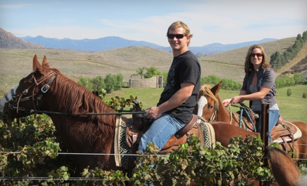 Horseback Package for 2 (a $300 value) - Wine Country Trails by Horseback in Temecula