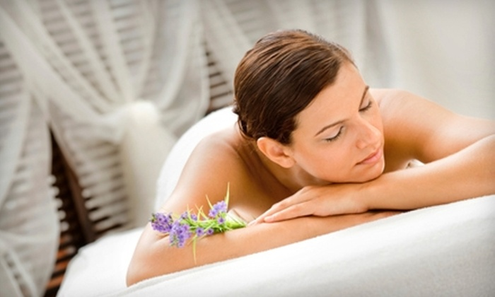 Metta Wellness Center - Westminster: $25 for One of Three Spa Rituals at Metta Wellness Center in Westminster ($50 Value)