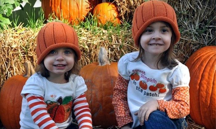 Fleitz Pumpkin Farm - Oregon: $5 for Four Corn-Maze Admissions and Four Hayrides at Fleitz Pumpkin Farm in Oregon
