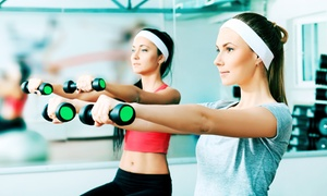 Catch a Good Habit Fitness: Three or Five 60-Minute Personal-Training Sessions at Catch a Good Habit Fitness (Up to 67% Off)